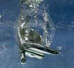 ponsel jatuh ke air